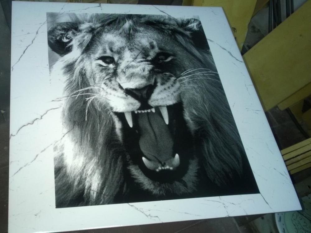 Lajota 50x50 cm